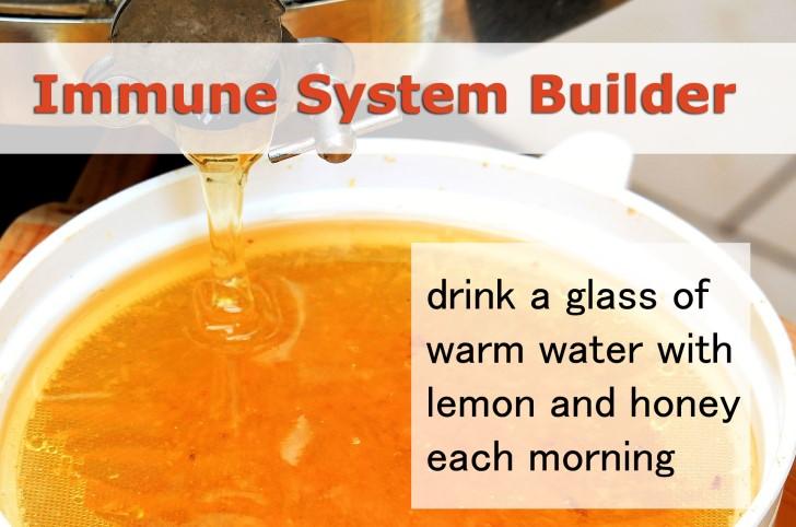 honey for immune system