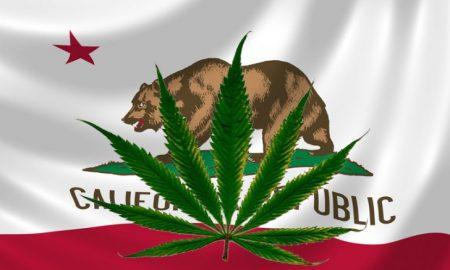 marijuna-allowed-in-california-728-x-443